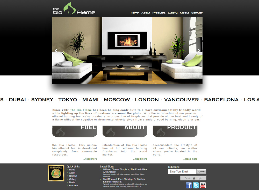 CMS Web Design For Eco Friendly Fireplace Company Digital Lion